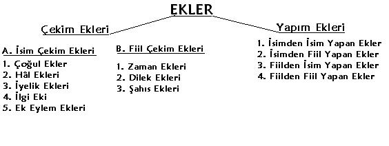 ekler_ve_sozcuk_yapisi